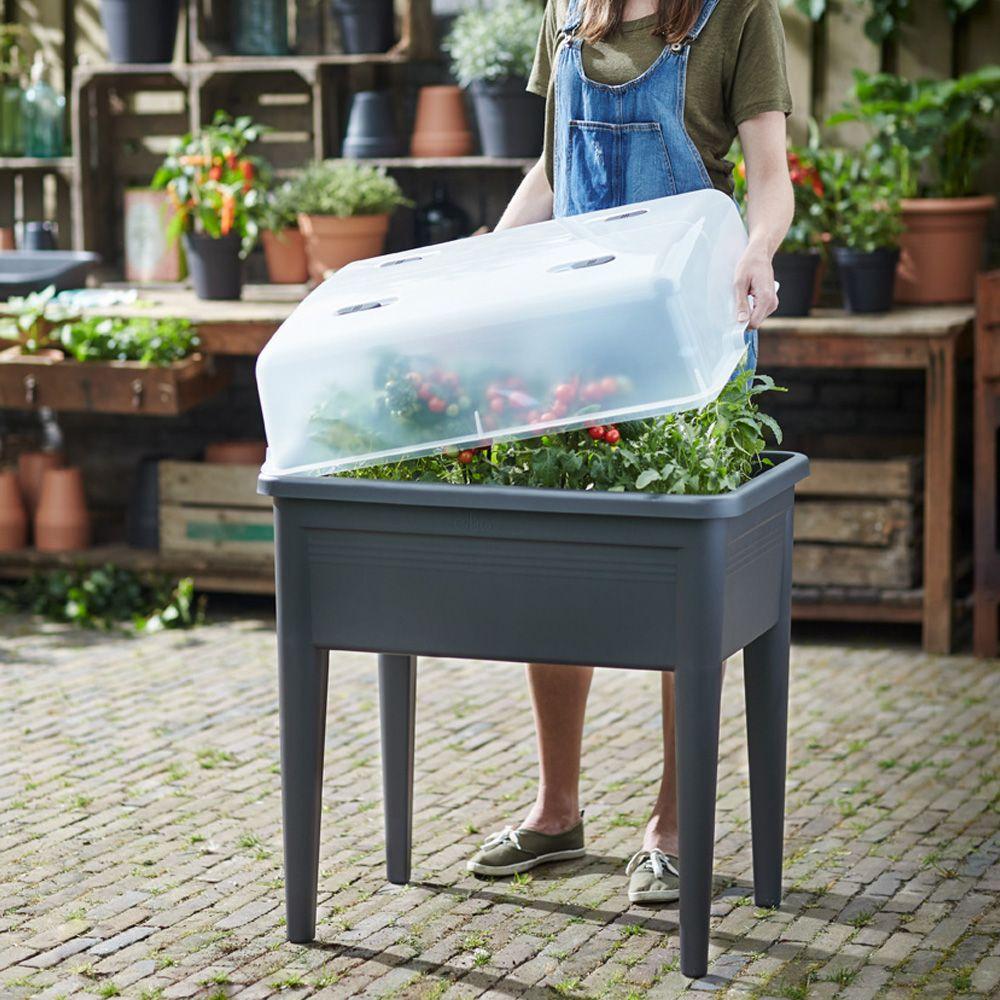 carr potager avec cloche elho l76 h65 1 cm noir plantes et jardins. Black Bedroom Furniture Sets. Home Design Ideas