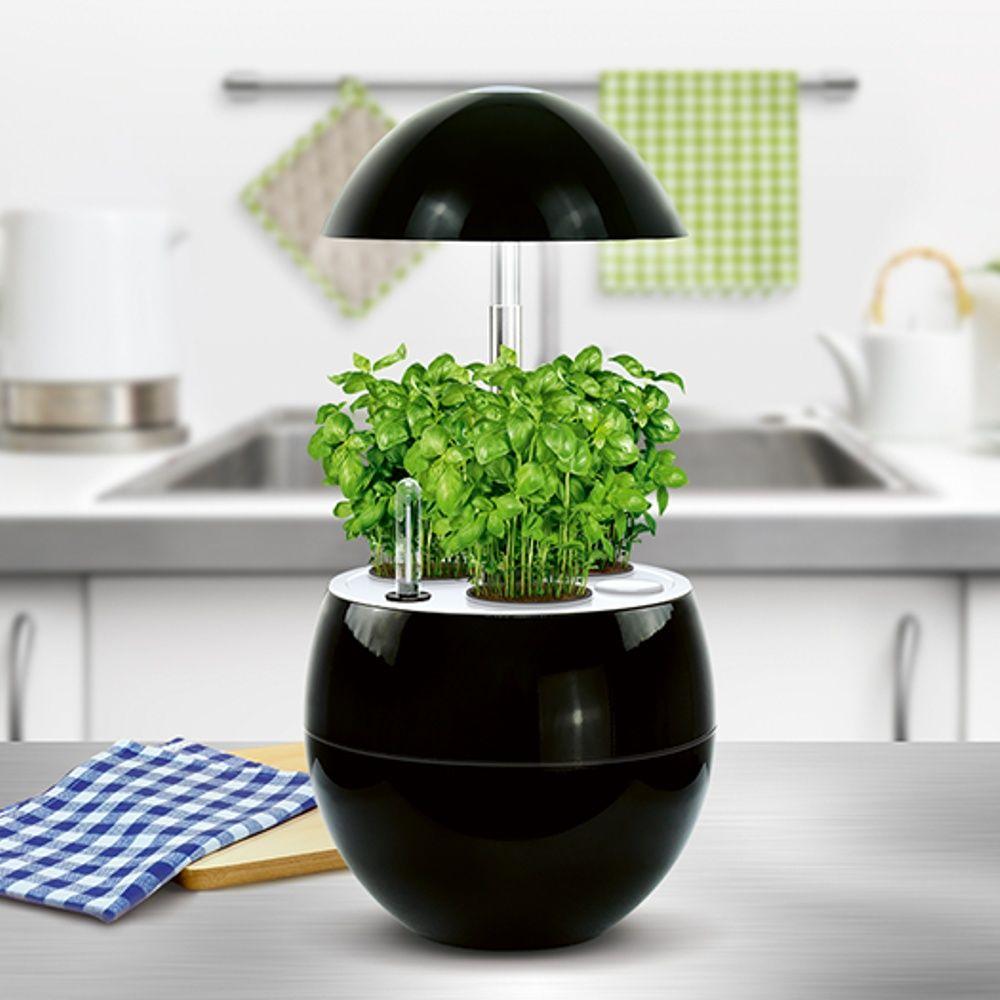 Potager d 39 int rieur 2l nelia kitchen gardening noir for Jardinage d interieur