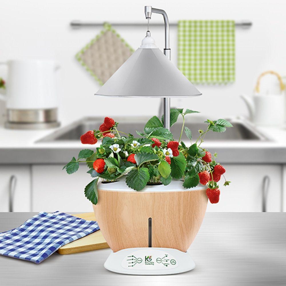 potager d 39 int rieur 6l nestor kitchen gardening plantes. Black Bedroom Furniture Sets. Home Design Ideas