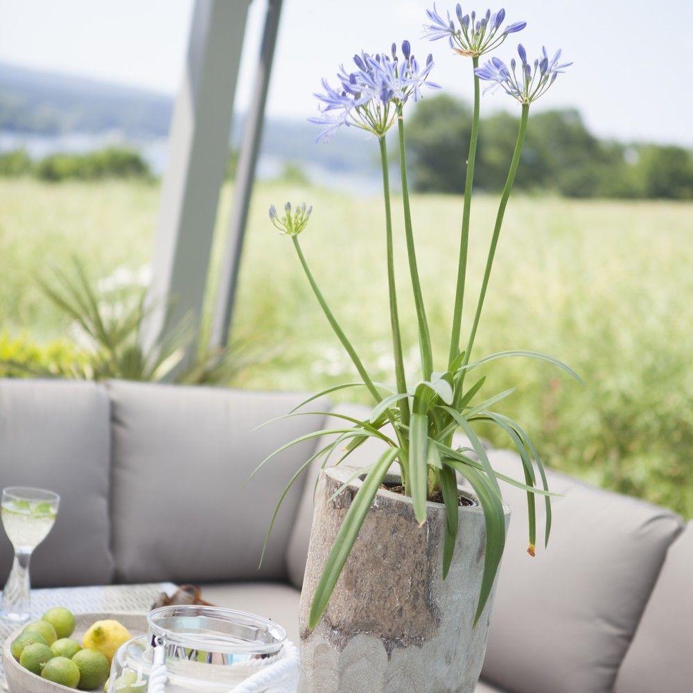 Salon De Jardin Kettler Marbella R Sine Canap Table 2 Tabourets Plantes Et Jardins