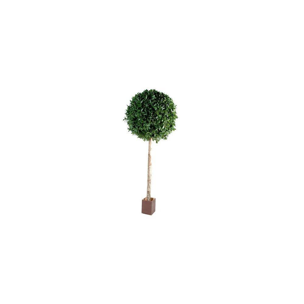 Laurier boule tige h150cm tronc naturel feuillage - Tronc d arbre artificiel ...